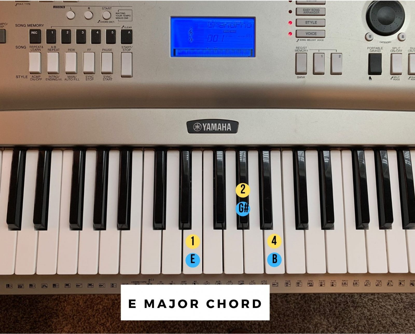 G# Piano Chord How To Play Piano The Ultimate Guide Lessons On The Go
