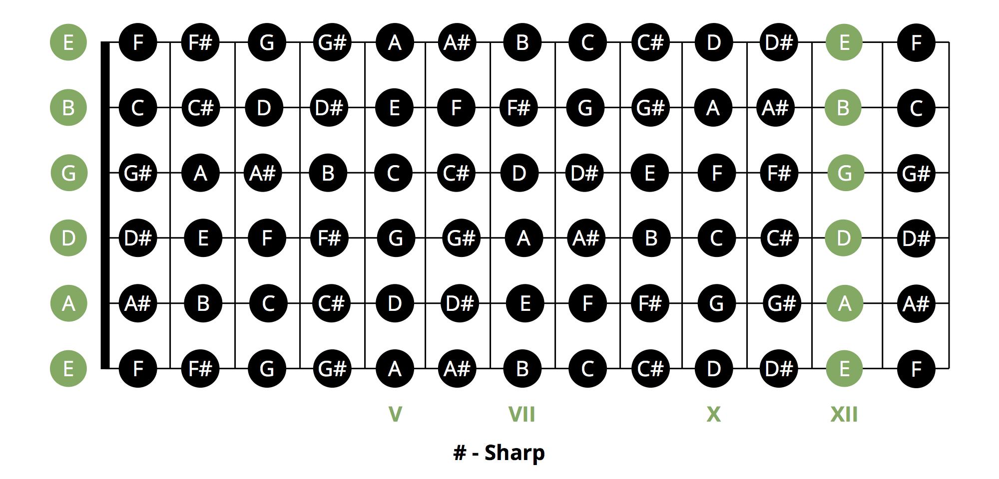 Guitar Chord Chart Most Popular Beginner Guitar Chords Chart Musician Tuts