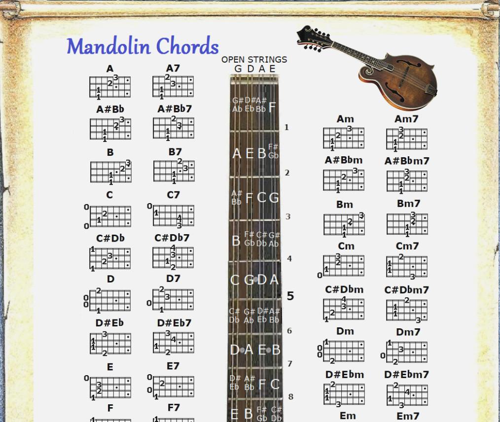 Mandolin Chord Chart Mandolin Chords Chart Mandolin Chord Chart Poster Chart Information