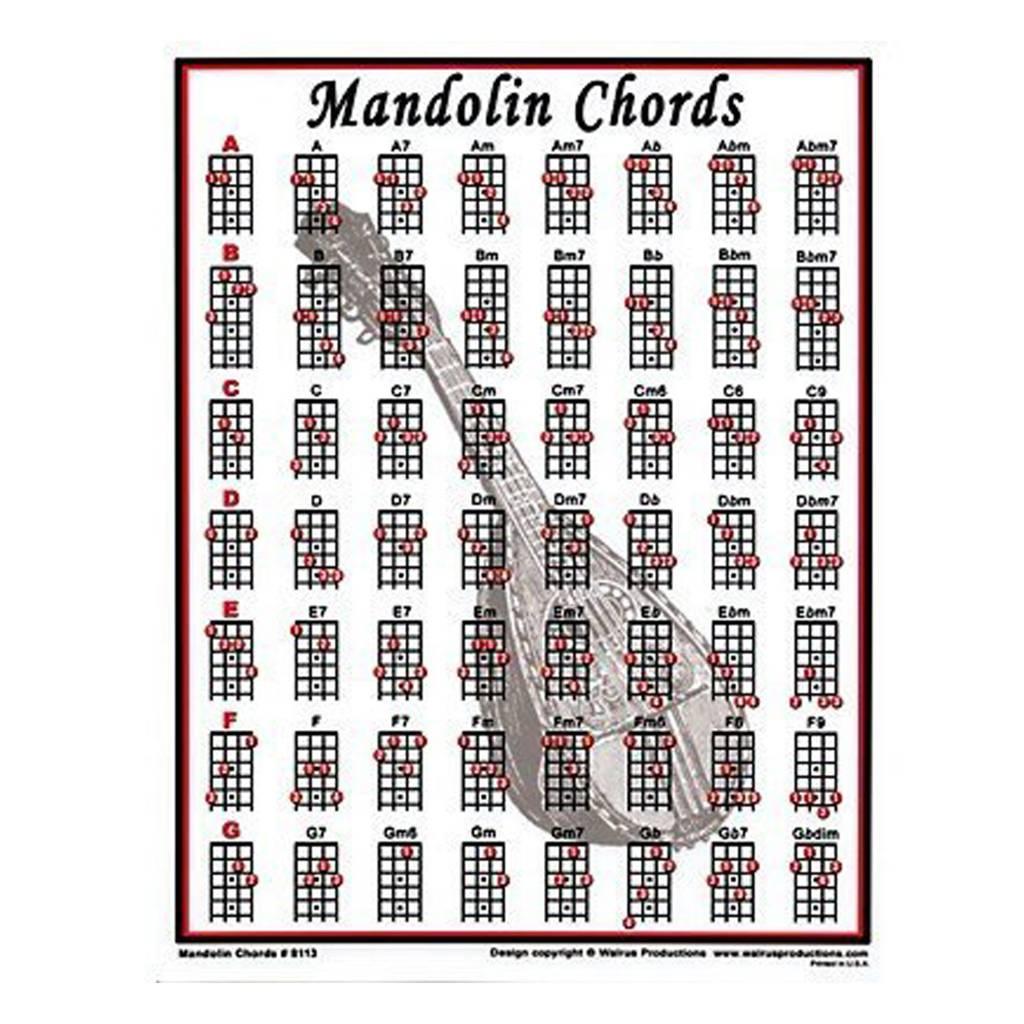 Mandolin Chord Chart Walrus Mandolin Mini Chord Chart